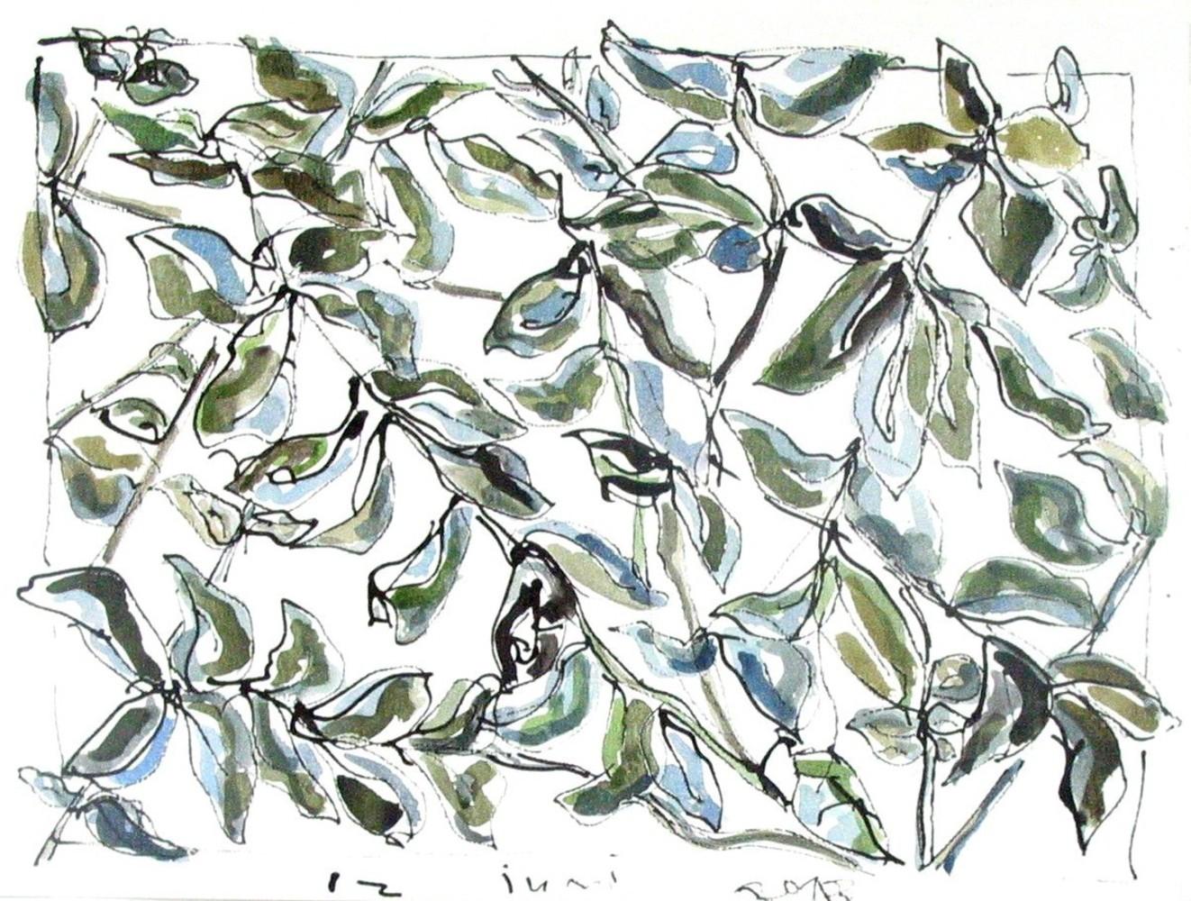 Plantvormen