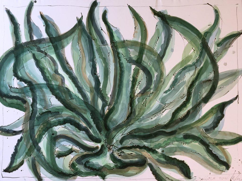 Plantvormen pen & inkt