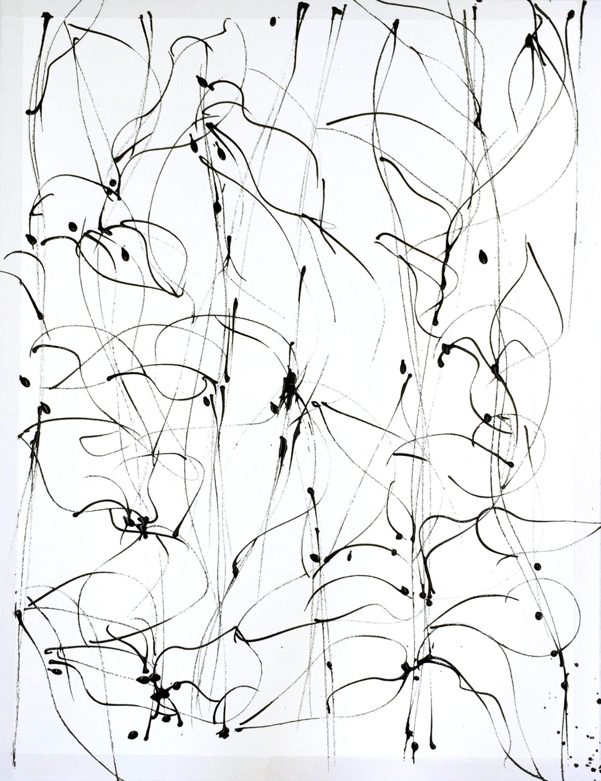 Bladeren pen en inkt 50-65 cm