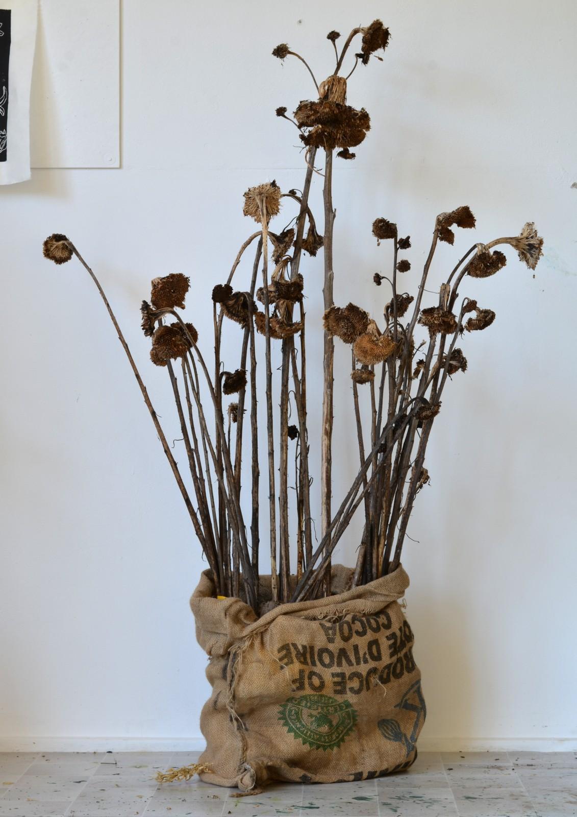 Zonnebloemen in zak