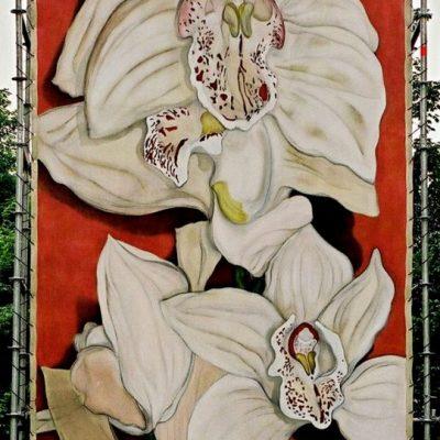 Orchidee podiumdoek 300-600 cm