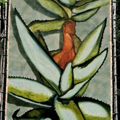 Cactus podiumdoek 300-600 cm