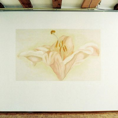 Lelies, Dansstudio. 250-100 cm