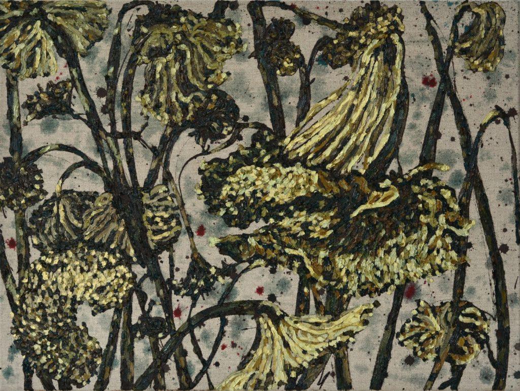 Zonnebloemen verdord in een veld 60-80 cm